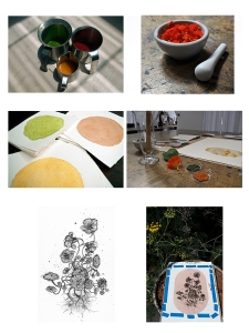 Anthotype process with nasturtium pigments.